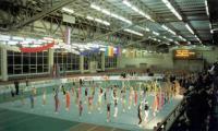 Дворец спорта «Рубин». 1984 г.