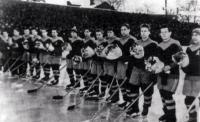 Хоккейная команда «Дизелист».