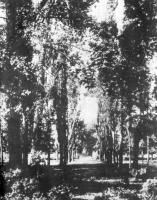 Усадьба Зубрилово 2